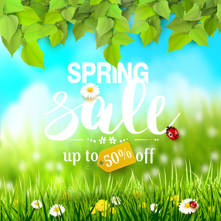 Spring sale flyer with leaves and grass with flowers in front of a sunny meadow.