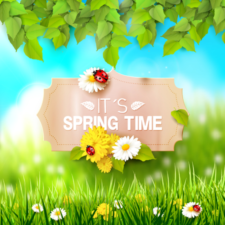 Spring background with leaves, paper label and grass with flowers in front of a sunny meadow.