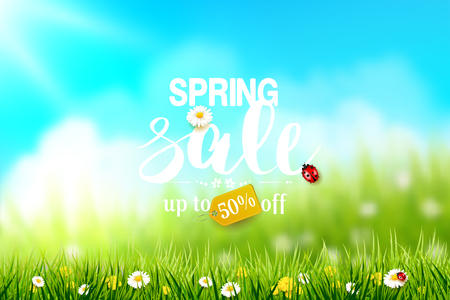 Spring sale flyer with grass and flowers in front of a sunny meadow.