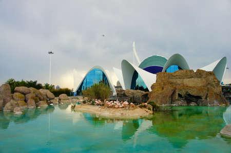 sealive: LOceanografic, Valencia. Editorial