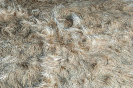 Detail of a brown furry rag in horizontal image format.