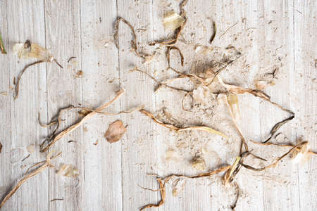 An artfully arranged generic flat background texture wood panel layout with a mix of sand and organic matter in natural earthy hues and tones. Stock Photo