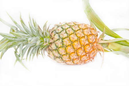 ripe pineapple isolated on white  photo