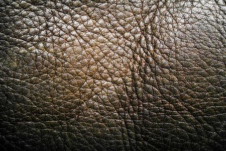 leather label: Dark leather label, vintage background