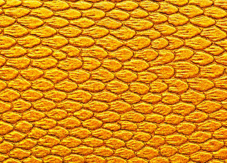 serpiente de cascabel: Snakeskin texture leather, can be used as background