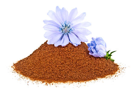 chicory coffee: Blue chicory flower and powder of instant chicory isolated on a white background. Cichorium intybus.