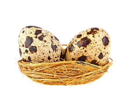 Quail eggs in a brown nest on white background Stock Photo