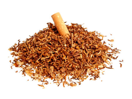 Cigarette and tobacco isolated on a white background