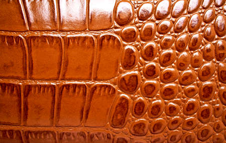 satined: Brown alligator patterned background Stock Photo