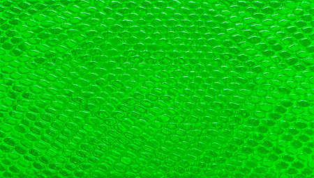 Abstract green snakeskin leather, pattern background
