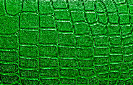 Crocodile leather texture background Stock Photo