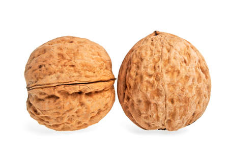 two objects: Two walnuts on a white background, isolated objects