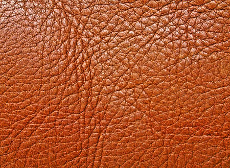 pelage: Brown textured leather background