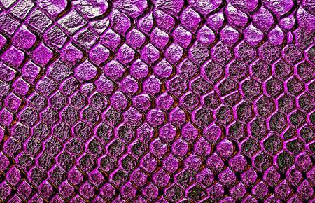constrict: Snake skin