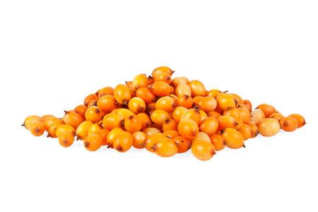 argousier: Sea buckthorn berries isolated on white background