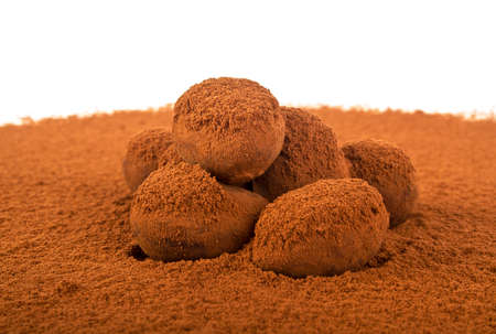 truffe blanche: Chocolate truffle isolated on white background Banque d'images
