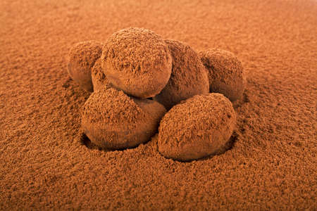 confect: Chocolate truffles coated with cocoa powder Stock Photo