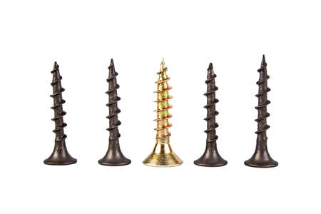 Gold and black screws on a white background