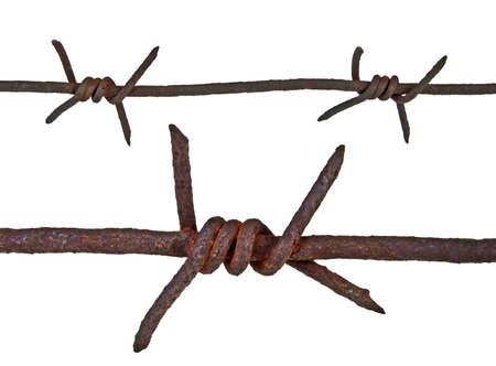 prohibido el paso: Alambre de púas oxidado en el fondo blanco Foto de archivo