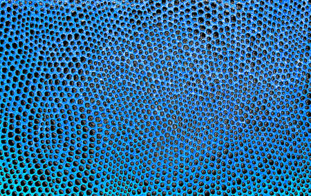 big slick: Blue salamander leather, can be used as background Stock Photo
