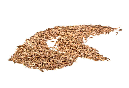caraway: Cumin seeds or caraway isolated on white background Stock Photo