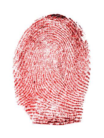 archetype: Red fingerprint on white background Stock Photo