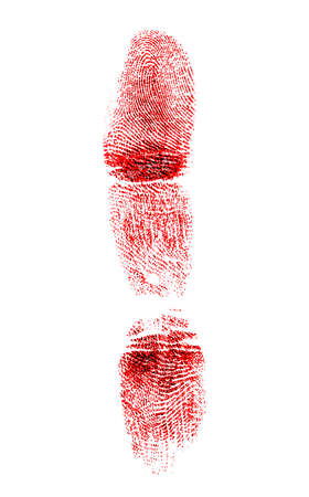 labyrinthine: Red fingerprint on white background Stock Photo