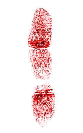 labyrinthine: Red fingerprint on white background Stock Photo