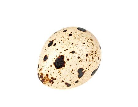 Quail egg on white background