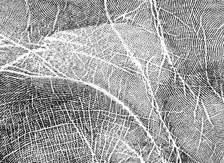 handprint: Handprint Stock Photo