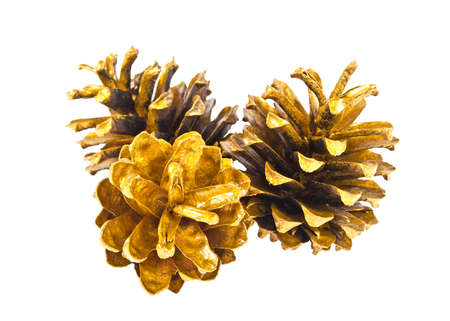 Three golden pine cones isolated on the white background