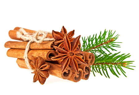 Fir tree branch, anise and cinnamon sticks isolated on white background Stock Photo