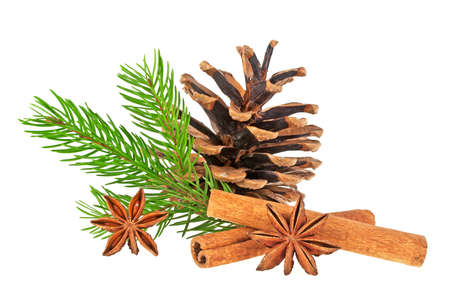 Pine cone, fir tree branch, cinnamon and anise stars on a white background. Christmas decorations.
