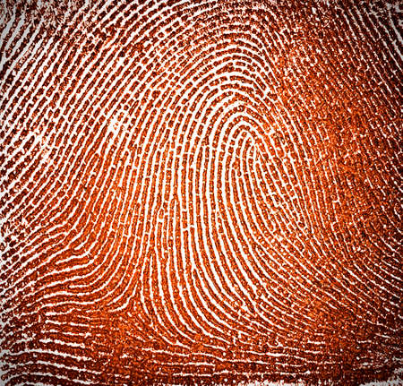 labyrinthine: Fingerprint as background Stock Photo