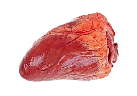 Beef heart isolated on a white background Stockfoto