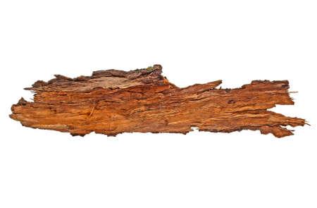 Bark tree isolated on a white background Stock Photo