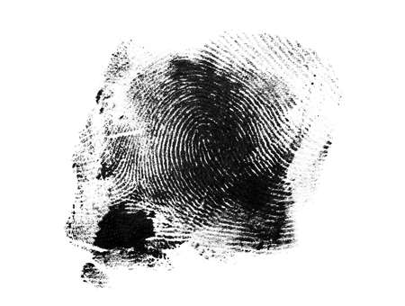 Fingerprint on white background Stock Photo