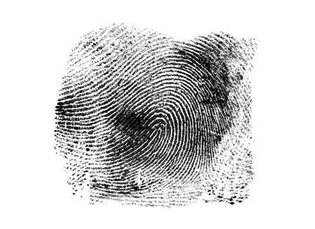 fingermark: Black fingerprint on a white background
