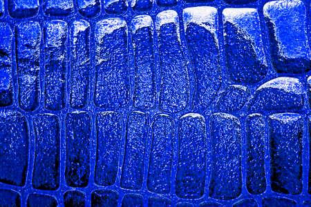 black leather texture: Reptile snake texture, closeup