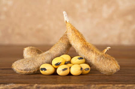 Soy pods on wooden background