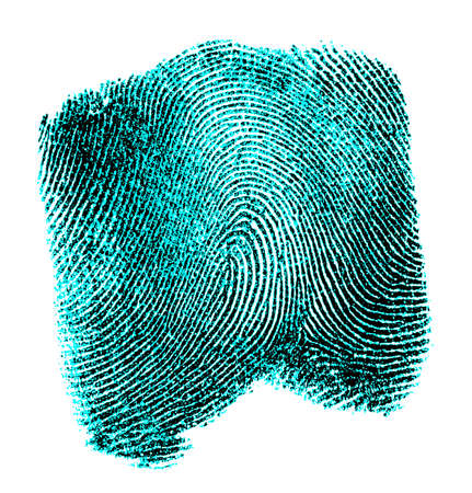 labyrinthine: Fingerprint