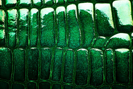 Abstract leather crocodile texture for background