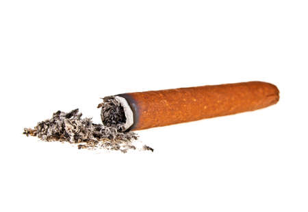 Brown cigar with ash on a white background
