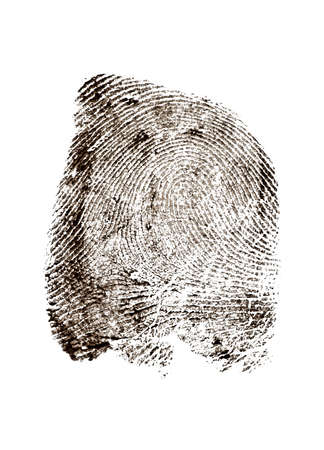 View of a fingerprint revealed by printing. Police fingerprint. Stock Photo