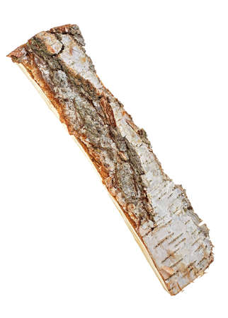 Birch log on white background Stock Photo