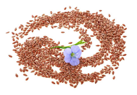 Pile of flax seeds with flower isolated on white background. Top view.