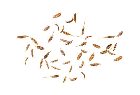 Cumin seeds isolated on a white background. Top view.