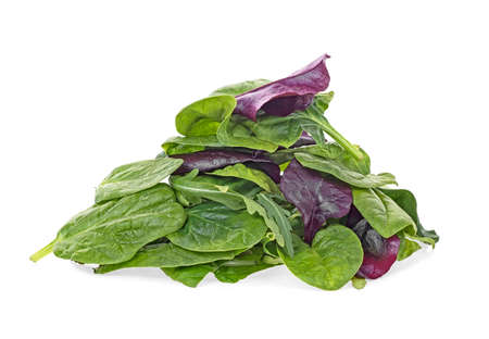 Salad mix with rucola, spinach, leaves of red chard and leaves of bulls blood, white background. Daily healthy diet. Фото со стока