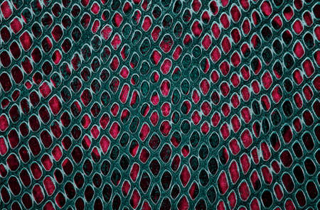 Colorful snake skin texture. Seamless pattern. Abstract background.