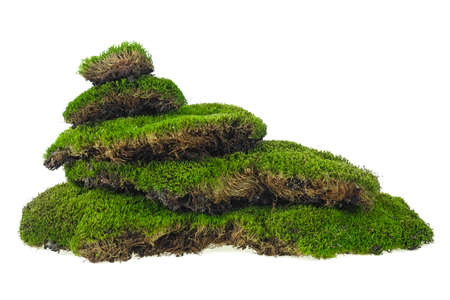 Green mossy hill on a white background. Moss pyramid.